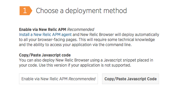 Choose the CopyPaste Javascript code deployment method if you cant use APM