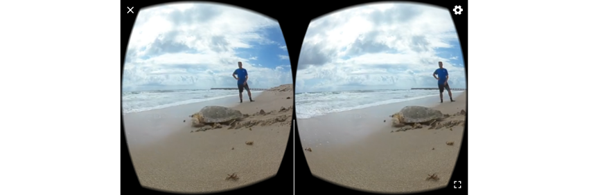Image of beach scene with Google Cardboard