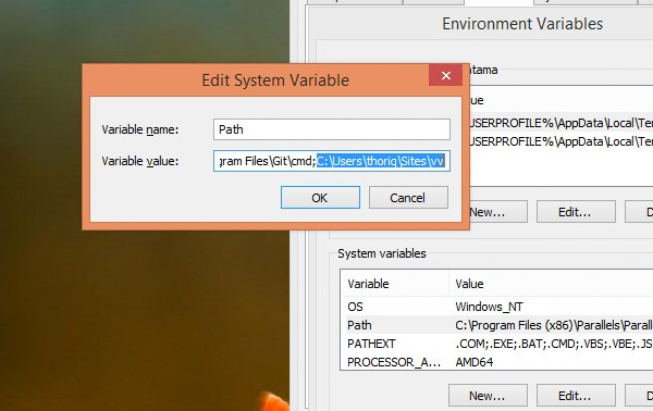 Edit System Variable diablog in Windows