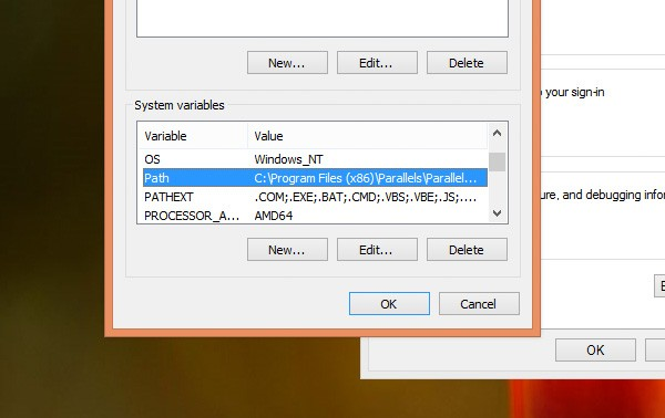 Windows System Path